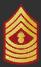 Sergent V