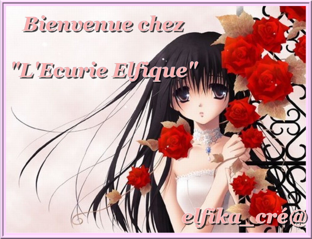 ♥♥♀♂ Écurie elfike ♂♀♥♥ Index du Forum