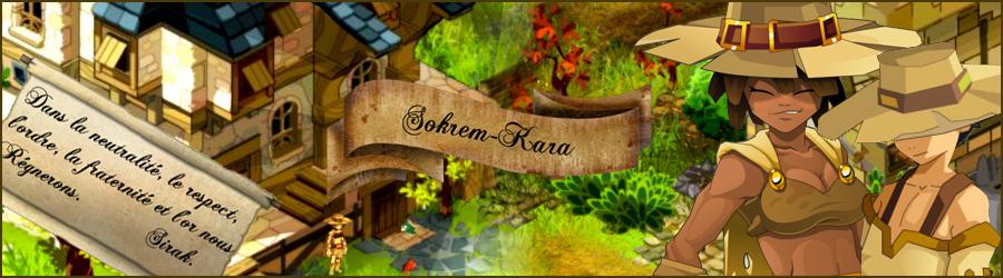 Le Clan Sokrem-Kara Index du Forum