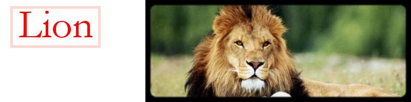 LIONS Index du Forum