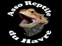 Association Reptile du Havre Index du Forum