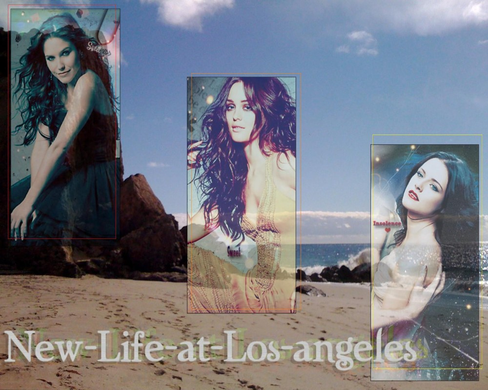 New-Life-at-Los-angeles Index du Forum