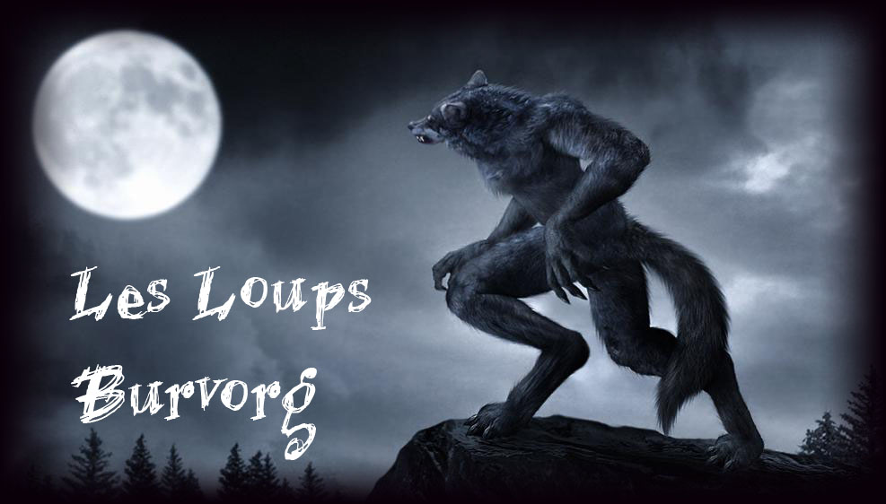 Les Loups Burvorg de Saihan Forum Index