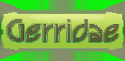 Projet Gerridae Index du Forum