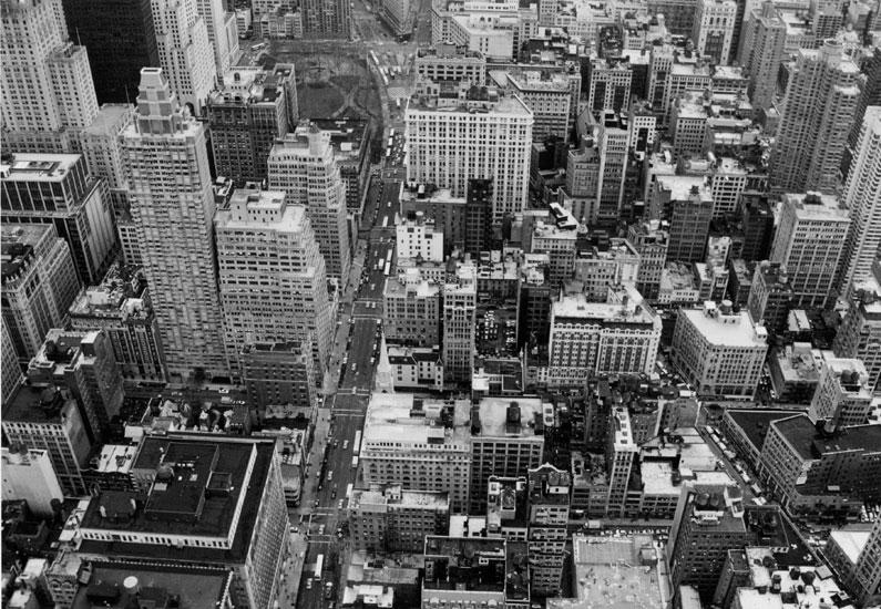 ♦ New York University ♦ Index du Forum