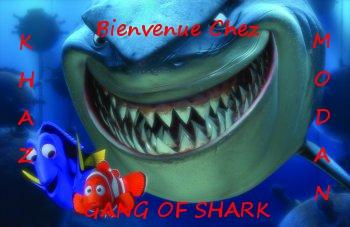 La guilde Gang Of Shark sur Khaz Modan Index du Forum