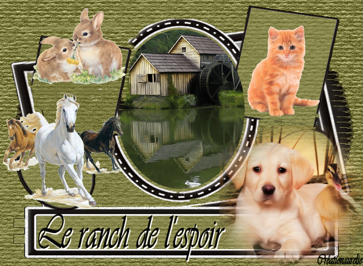 le ranch de l'espoir Index du Forum