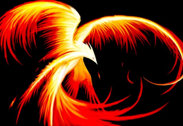 Réincarnation des Phoenix Index du Forum