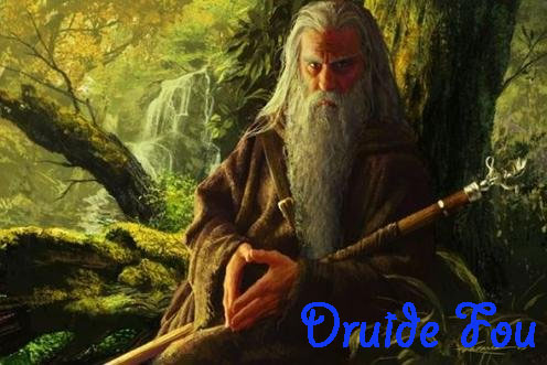 Druide Fou Index du Forum