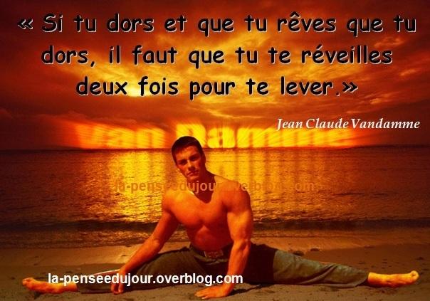 Citations Van Damme