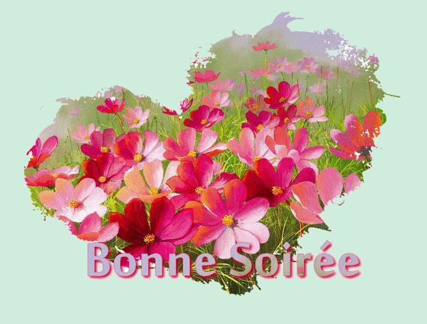 BONNE SOIREE DE VENDREDI 55ae7398-43ebbbe