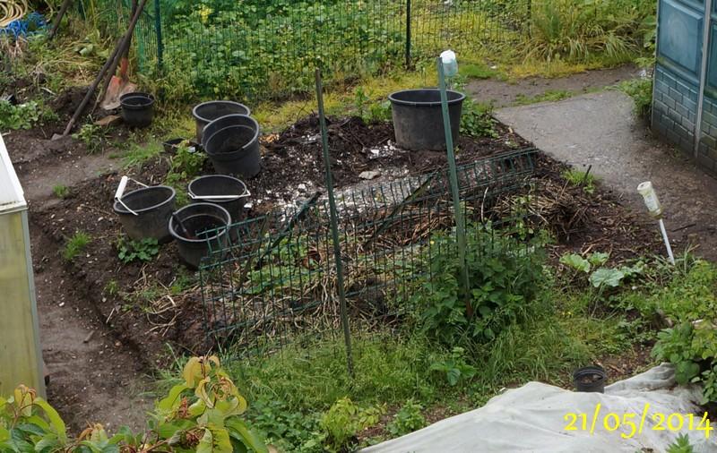 Forum un jardin blanc dans l 39 oise jouy sous thelle - Quand planter les tomates cerises ...