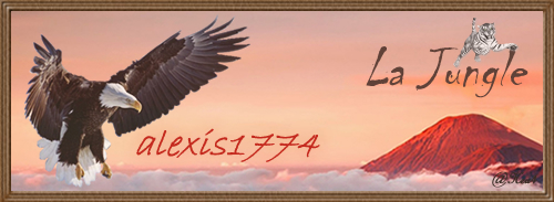 alexis1774-469225bjpg
