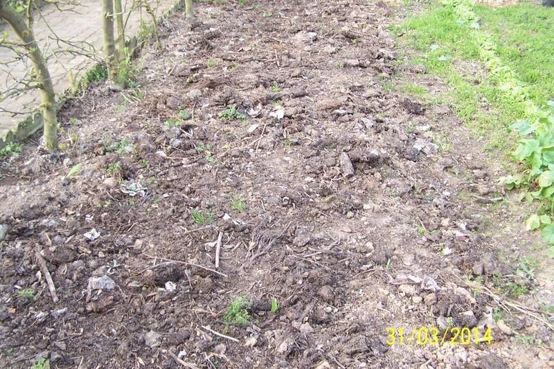 Plantation des pommes de terre forum blog de jouy sous thelle - Periode plantation pomme de terre ...