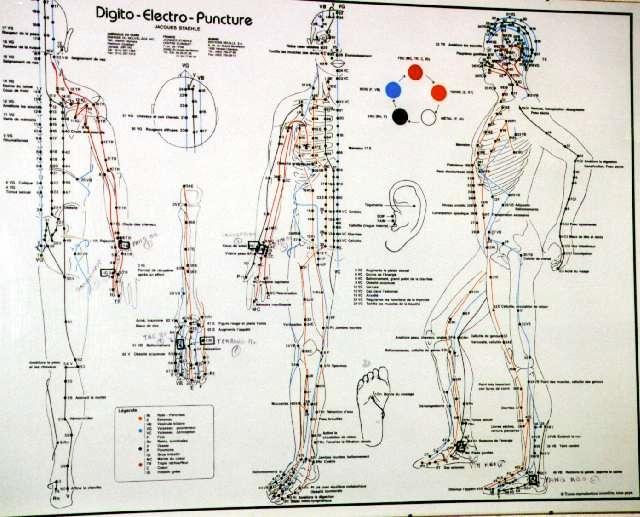 Bien connu Le Forum Ésotérique :: les points acupuncture QP49