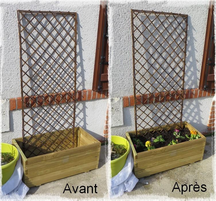 Les p 39 tites croix tourangelles mon jardin mes fleurs for Mon jardin gifi fr