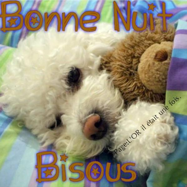 BONNE SOIREE DE MARDI 5b568e05-473e573