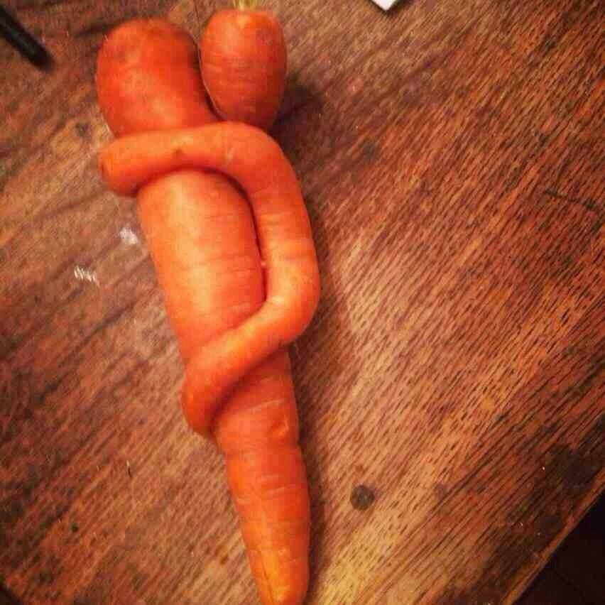 un-couple-de-carotten-5044df5