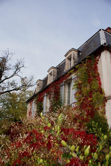 X 2015 DORDOGNE (24) octobre Dordogne et Caillac (près de Cahors) Va1-027-4d28393