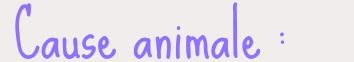 image de pétition en ligne cause animale sur An'Coeur Annuaire du coeur, annuaire internet par thématique