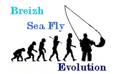 """BREIZH SEA FLY "" Index du Forum"