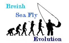 """""""BREIZH SEA FLY """" Index du Forum"""