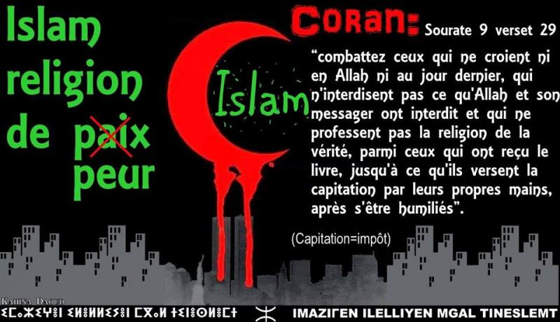 Plaidoyer contre les peuples musulmans, par Ben Ammar Salem - Page 4 R-duite-50bf069
