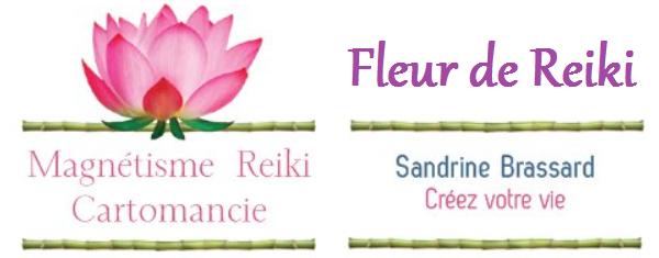 Fleur de Reiki Index du Forum