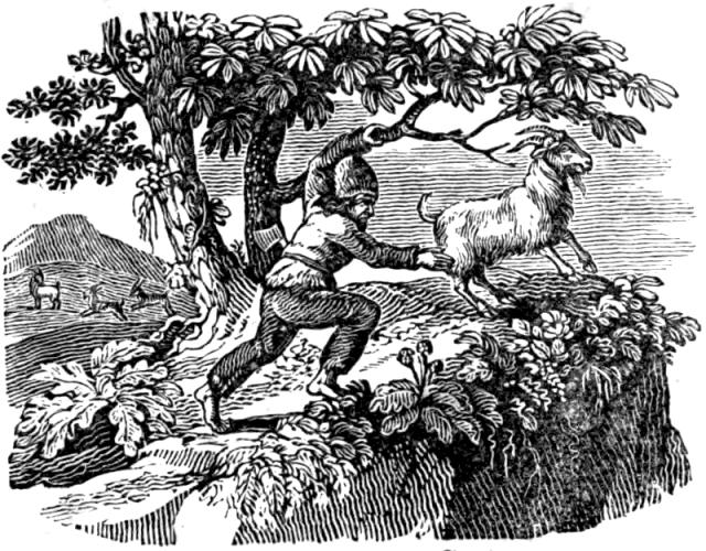 Une petite histoire par jour (La France Pittoresque) - Page 13 Selkirk_catching_a_goat-5504218