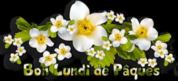 Bonjour du mois d'Avril 2019  - Page 3 Lundpa-560fac4