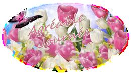 Bonjour du mois de Mars 2019   - Page 2 Pngtuli-55e347d
