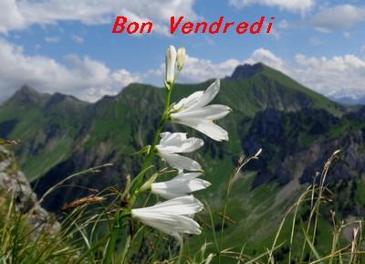 Bonjour bonsoir,...blabla Decembre 2013 - Page 37 Dsc07157-4892712