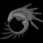 [TABLEAU D'AFFICHAGE] Résultats des concours. Modele_tatouage_r...canique2-4765720