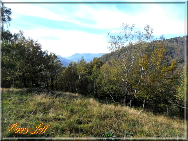 Petite rando dans les environs de Saint Amarin 122-485a8f9
