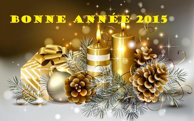 nouvelle année 20152-493708e