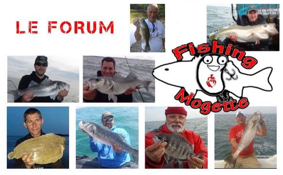 fishing mogette Forum Index