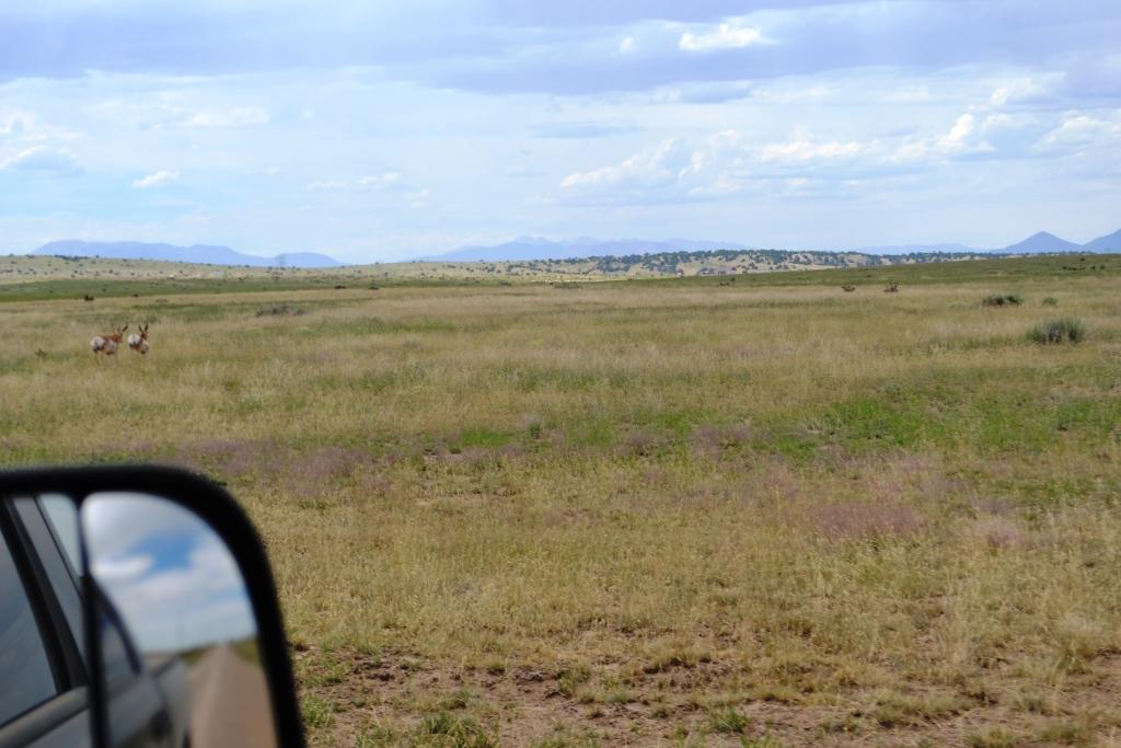 Walsenburg, Colorado (Usa) Le 8 et 17 Août 2014. 2014-08-17-walsen...ie-2-01--47b1eea