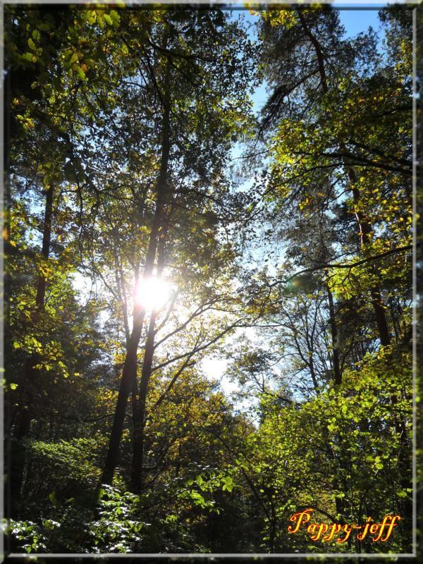 Petite rando dans les environs de Saint Amarin (2) Vierge-moosch-panorama-025-4872e6e