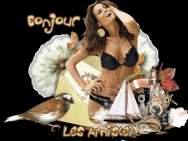 BONNE JOURNEE DE DIMANCHE Bonjour-les-amis-46f677a