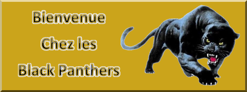 Black Panthers Guild Index du Forum