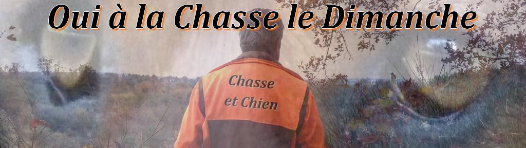 Le Forum Chasse et Chien Index du Forum