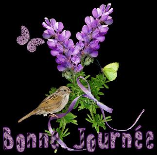 BON MERCREDI 51017389-4c05005