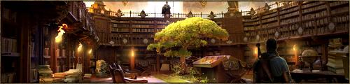 Véritable dédale d'étagères, disposées sur trois étages, on y trouve d'innombrables livres, parchemins et grimoires traitant tous les sujets souhaitables. Ses rayonnages soigneusement entretenus représentent le réel coeur du savoir du Kaerl. Grâce à des escaliers secondaires, on accède à une grande galerie pour étudier plus tranquillement.
