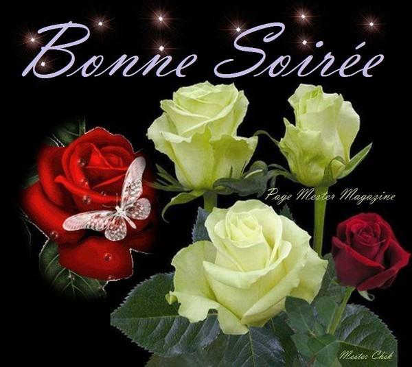 BONNE SOIRÉE DE VENDREDI 6b925791-49e5850