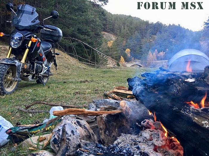 Forum MSX  Index du Forum