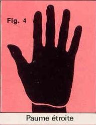 La forme générale de vos mains Paume-troite-figure-4-4c06852