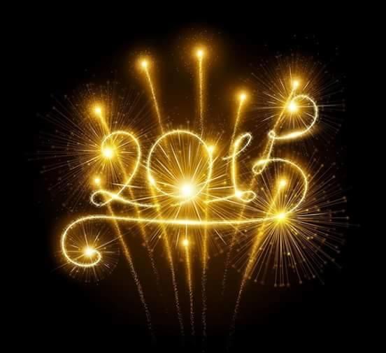 Bonne année  10891570_15531631...657471_n-4945843