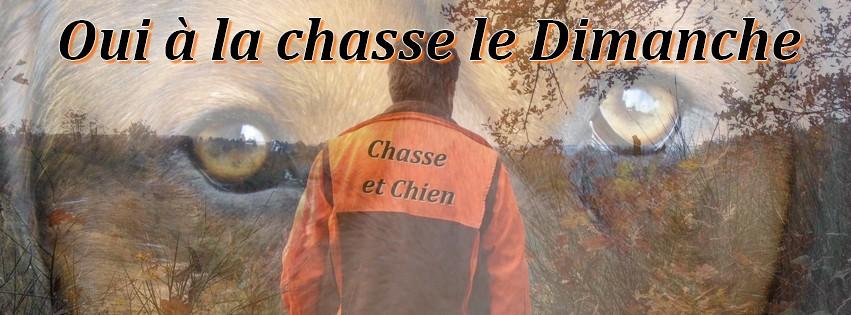 Le Forum Chasse et Chien Forum Index