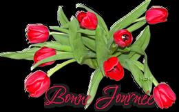 Bonjour du mois d'Avril 2019  - Page 3 Pngbav-560b0bc