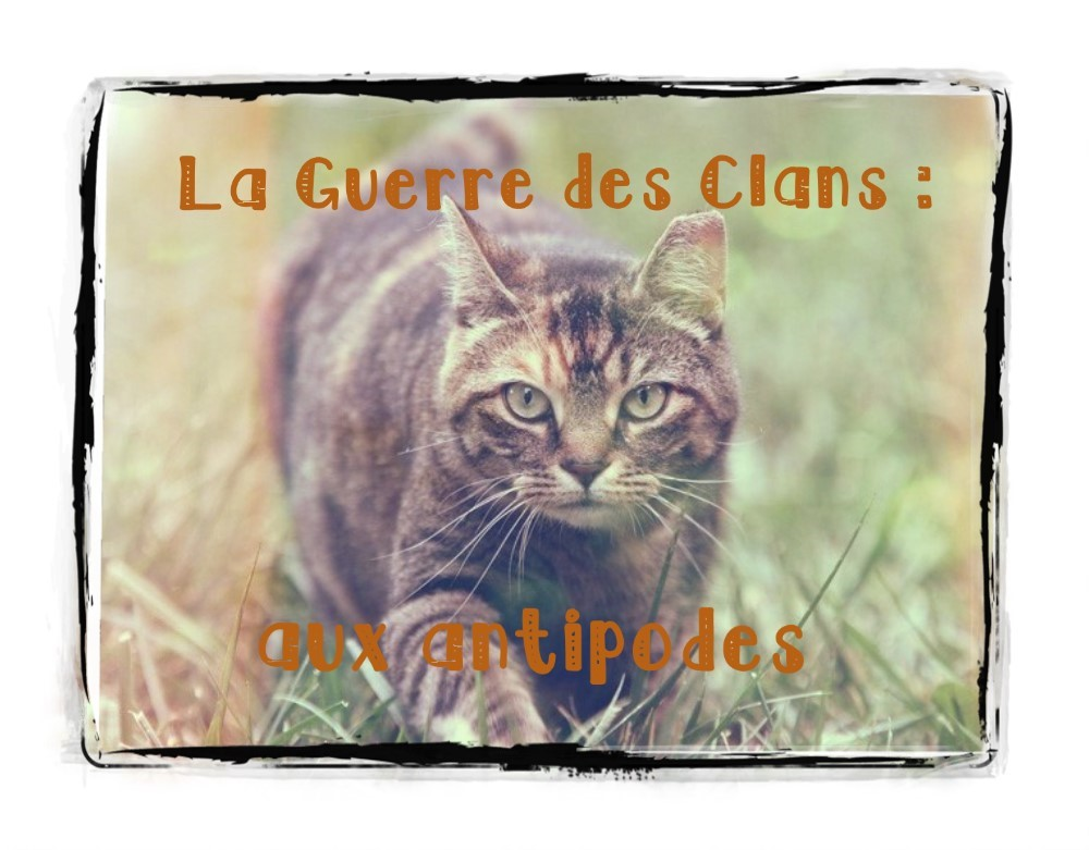 la guerre des clans : aux antipodes Index du Forum